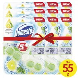 Domestos Power 5 Green Tea & Citrus WC blok 9 x 55 g