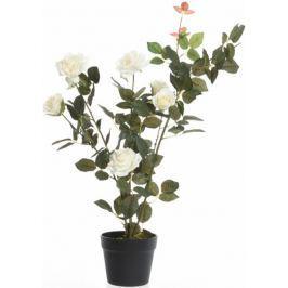 Kaemingk Růžový keř v květináči, bílý, 80 cm