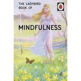 Hazeley Jason: The Ladybird Book Of Mindfulness Světová současná