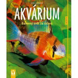 Gutjahr Axel: Akvárium - Barevný svět za sklem - Jak na to