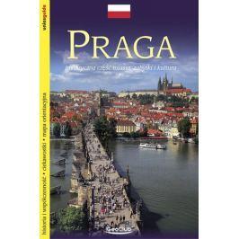 Kubík Viktor: Praha - průvodce/polsky