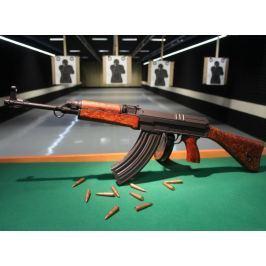 Poukaz Allegria - střelba z dlouhých zbraní na 50m střelnici