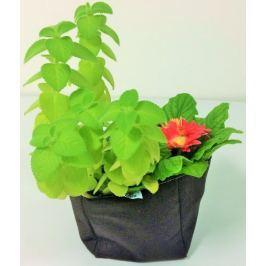 Previosa Obal na pěstování rostlin 2 ks