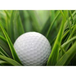 Poukaz Allegria - golf na zkoušku s masáží