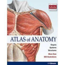 kolektiv: Atlas of Anatomy : The Human Body Described in 13 Systems