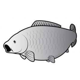 Delphin Nálepka Kapr Silver