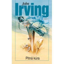 Irving John: Pitná kúra Světová současná