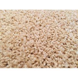Kusový koberec Color Shaggy béžový 200x300 cm