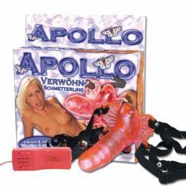 Motýlek - Apollo