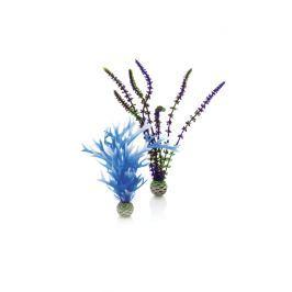 Oase Sada vodních rostlin modro-fialová