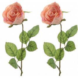 Kaemingk Růže broskvová 45 cm, 2 ks