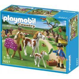 Playmobil 5227 Koňský trénink