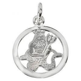 Brilio Silver Stříbrný přívěsek Vodnář 441 001 00612 04 - 0,98 g stříbro 925/1000