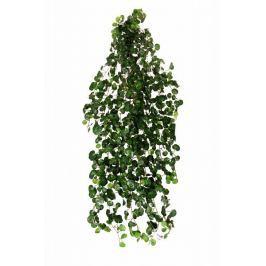 EverGreen Mini begónie 180 cm