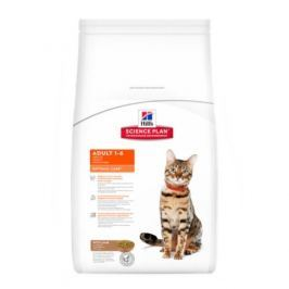 Hill's Feline Adult Lamb 2 kg
