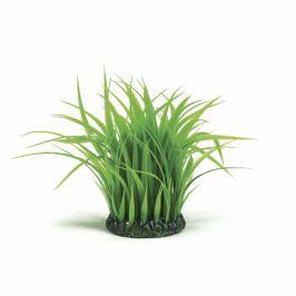 Oase Trs vodní trávy velký