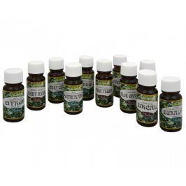Saloos Vonný olej do aromalamp 10 ml (Varianta Jablko - skořice)