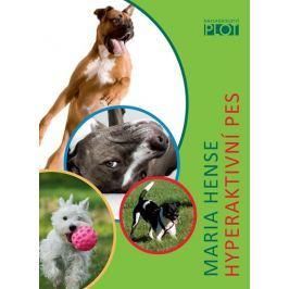 Hense Maria: Hyperaktivní pes
