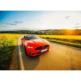 Poukaz Allegria - jízda ve Ford Mustang GT 5.0 - 8 hodin Pelhřimov