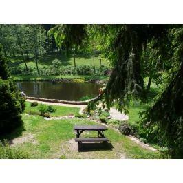 Poukaz Allegria - romantický pobyt s piknikem či večeří