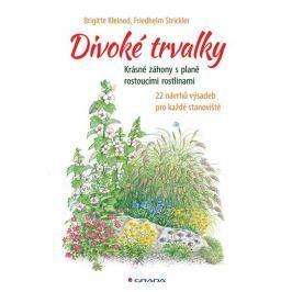 Kleinod Brigitte, Strickler Friedhelm,: Divoké trvalky - Krásné záhony s planě rostoucími rostlinami