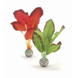 Oase Sada vodních rostlin červeno-zelená malá