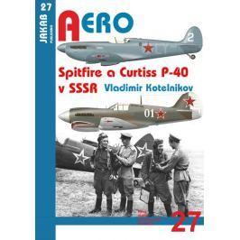 Kotelnikov Vladimir: Spitfire a Curtiss P-40 v SSSR