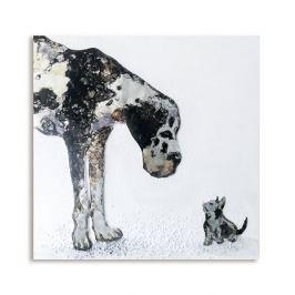 Papillon Obraz Cat & Dog 80x80 cm, olej na plátně