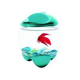 Tetra Betta Bubble akvárium modrá 1,8l