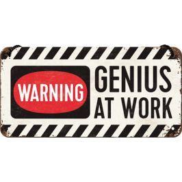 Postershop Závěsná cedule Warning! Genius at Work