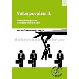 kolektiv autorů: Volba povolání II.