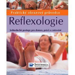 Gillanders Ann: Reflexologie - Praktický obrazový průvodce
