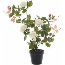 Kaemingk Růžový keř v květináči, bílý, 50 cm