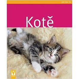 Eilert-Overbeck Brigitte: Kotě - Jak na to