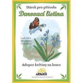Arnika Darovací listina - Adopce květiny na louce - Ladoňka dvoulistá