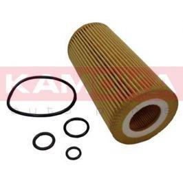 Olejový filtr F108901